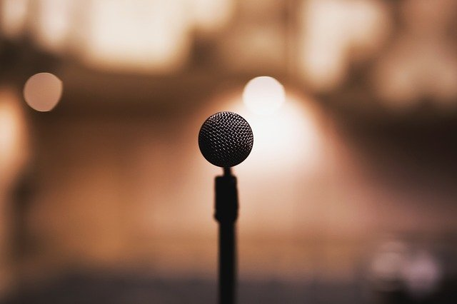 Nahrávací mikrofon