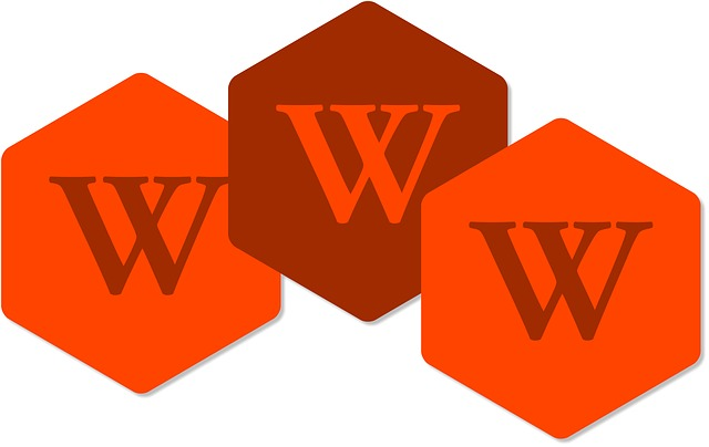 world wide web.jpg